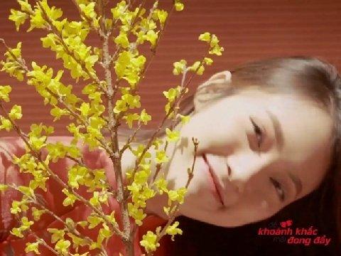 www.viettelstore.vn binh duong
